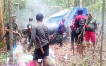 Sebanyak 21 Pondok Penambang Liar di TNTP Dihancurkan