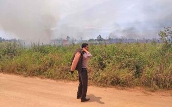 Tak Ada Hujan Sepekan, Kebakaran Lahan di Kasongan Mulai Terlihat