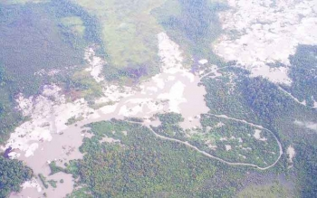 Alur Sungai Sekonyer Hancur, Batas TNTP jadi Tak Jelas
