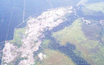 Kawasan Sungai Sekonyer yang jadi lokasi penambangan liar.
