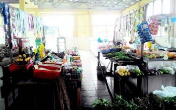 Hanya ada dua pedagang yang menempati blok Sayur dan Ikan di Pasar Datah Manuah Palangka Raya. Padahal pasar ini pernah populer dan menjadi rujukan warga 10 -20 tahun lalu.