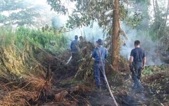 Sejumlah petugas pemadam kebakaran berusaha memadamkan api di tepi Jalan Kapten Mulyono, Kecamatan mentawa Baru Ketapang, Sampit, Sabtu (11/2/2017)