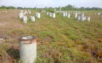 Tampak pondasi untuk pembangunan PLTU di Desa Pematang Panjang, Kecamatan Seruyan Hilir dipenuhi rerumputan.