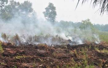 Lahan terbakar di Kecamatan Mentawa Baru Ketapang, Kabupaten Kotawaringin Timur, saat musim kemarau tahun lalu.