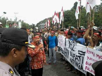 Sekitar 1.000-an massa pendukung Bupati Ahmad Yantenglie saat berorasi di halaman Kantor DPRD Katingan yang mengenakan ikat kepala merah dan membawa bendera merah putih.
