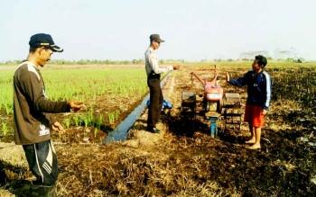 Para petani di Desa Teluk Pulai mulai beralih menggunakan alat pertanian modern.
