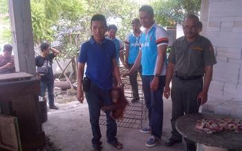 Heri pemilik orangutan foto bersama Kasi Wlayah III BKSDA Kalteng, Nizar Ardhanianto saat mengevakuasi orangutan.