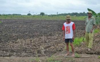 Warga transmigrasi di Desa Pulau Nibung Kecamatan Jelai Kabupaten Sukamara.