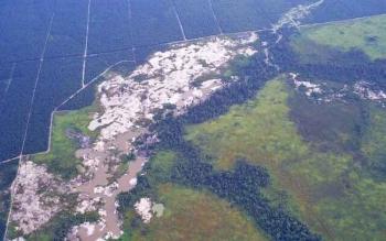 Kawasan Sungai Sekonyer yang rusak karena penambangan liar.