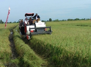 Bupati Ahmad Yantenglie saat melihat dan menaiki mesin pengoperasian pemanen padi di Desa Jaya Makmur, Kecamatan Katingan Kuala belum lama ini