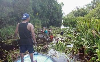 Sejumlah pelaku wisata membersihkan Sungai Sekonyer dari tanaman Bakung.