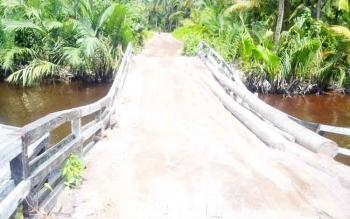 Kondisi jembatan yang sudah mereng diberi pohon kelapa dan timbunan tanah agat tidak ambruk saat dilalui kendaraan.