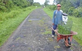Warga pemukiman Handil Makmur, Desa Persil Raya melintasi jalan di daerah tersebut.