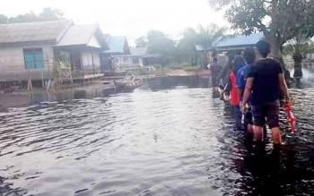 Desa Tambak Bajai yang menjadi langganan banjir setiap tahunnya.