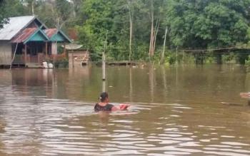 Salah satu warga Kelurahan Pangkut RT 1 berjalan di genangan banjir yang merendam kawasan tersebut, Sabtu (25/2/2017).