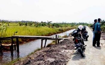 Kondisi parit di lahan pertanian Kapung Sambas blok 2 Kelurahan Padang Kecamatan Sukamara.