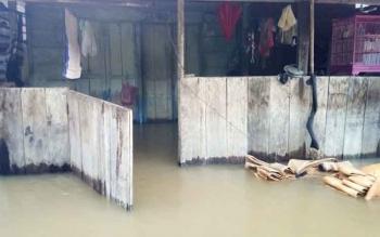Banjir merendam rumah warga di Desa Nanga Mua Kecamatan Arut Utara (Aruta) empat hari terakhir. BPBD Kobar meminta kepala desa untuk segera melaporkan ke pemerintah daerah jika bencana banjir sudah darurat.