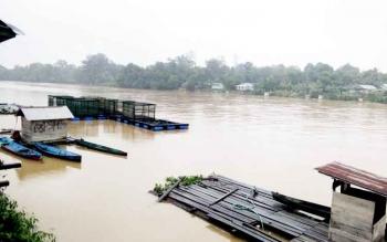Debit air Sungai Lamandau yang tampak meningkat, sejak beberapa hari terakhir.