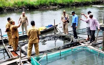 Pejabat Bupati Kotawaringin Barat Nurul Edy meninjau keramba warga Pangkalan Banteng. Semua ikan di keramba itu mendadak mati.