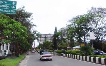 Sejumlah pohon besar di Jalan Jenderal Sudirman Sampit Rabu (1/3/2017).