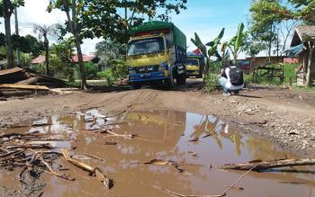 Jalan Ir H Juanda ditanami warga dengan pohon pisang, karena kerusakan yang bertambah parah.