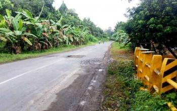 Jalan Trans Kalimantan di wilayah Pulang Pisau ini banyak dikupas namun belum dikerjakan oleh kontraktor, sehingga terlihat berlubang dan dalam, dan membahayakan pengendara. Ini karena belum semua lelang selesai