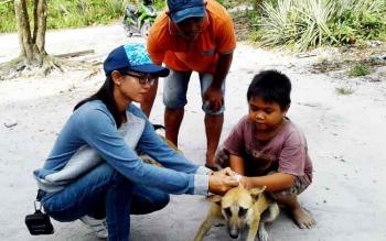 Drh Anik, petugas Dinas Pertanian Kapuas, saat memaksin anjing saat kegiatan pemberian vaksin di Kapuas Tengah.