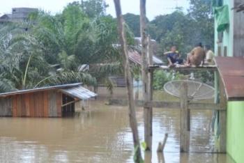 Warga bertahan Arut Utara bertahan di tengah kepungan banjir.