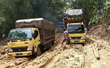 Dua buah truk terjebak kubangan lumpur di Jalan Muara Teweh menuju Kecamatan Teweh Timur dan Gunung Purei, Kabupaten Barito Utara.
