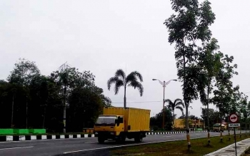 Wabup Sukamara Minta Dinas Terkait Sosialisasikan Pelarangan Tebang Pohon di Pinggir Jalan