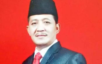 Ahmad Yani, Politisi PDI Perjuangan.