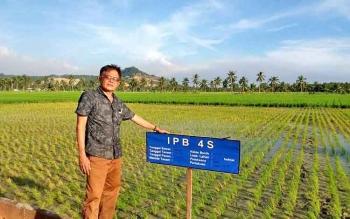 Kepala Dinas Pertanian Barito Utara Setia Budi saat mengunjungi Balai Benih Induk Padi (BBIP) di Sei Pinyuh Kabupaten Mempawah Kalimantan Barat (Kalbar) yang menggunakan metode Hozton .