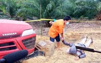 Genting Grup: Pembantaian Orangutan ini Jadi Pelajaran Besar