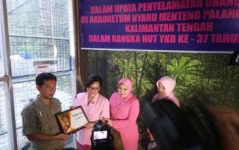 Penyerahan sertifikat Adopsi ke Ketua Bhayangkari Lina Anang Revandoko oleh Menejer Program BOSF Nyaru Menteng, Denny Kurniawan.