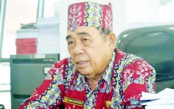 Lodewik C Iban, Ketua Organda Kalimantan Tengah