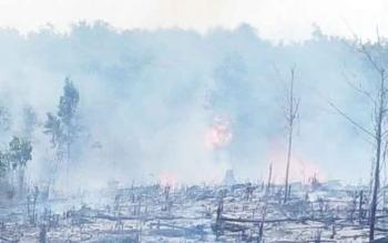 Inilah lahan yang terbakar di Jalan Tumbang Talaken, Km 53, Rasau, Kelurahan Petuk Bukit, Kecamatan Rakumpit, Palangka Raya pada Sabtu (25/3/2017) lalu.