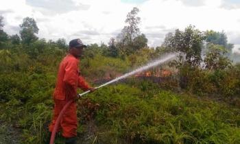Pemadam Kebakaran saat melalukan padaham lahan kebakaran pada tanggal 29 Maret 2017 lalu.
