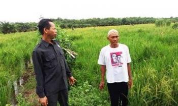 Ketua DPRD Kobar, Triyanto (kiri) bersama seorang petani di Bumi Harjo belum lama ini.