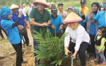 Bupati dan wakil bupati Kobar terpilih Hj Nurhidayah dan Ahmadi Riansyah (Nurani) saat menanm pohon kelapa sawit perdana di lahan plasma masyarakat Desa Umpang yang bekerja sama dengan PT Sawit Sumber Mas Sarana (SSMS) Tbk.