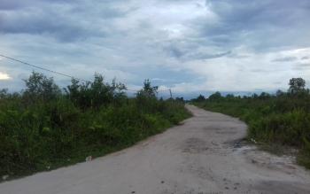 Salah satu akses jalan masuk menuju lokasi perjudian di Jalan Jenderal Sudirman KM 6, Sampit - Pangkalan Bun.