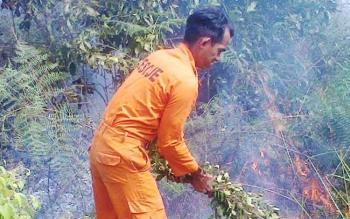 Petugas pemadam kebakaran (Damkar) Sukamara saat memadamkan kebakaran lahan, beberapa waktu lalu.