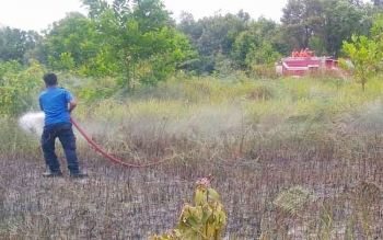 Petugas pemadam kebakaran (Damkar) Sukamara saat memadamkaan kebakaran lahan, beberapa waktu lalu.