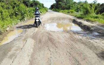 Kondisi salah satu ruas jalan Pulang Pisau-Bahaur yang berada di Kecamatan Kahayan Hilir.