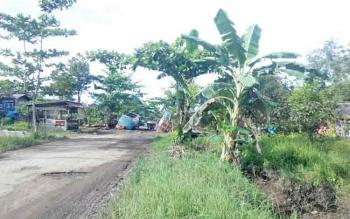 Dua buah truk amblas di Jl Desa Pelangsian yang mengalami kerusakan cukup parah, Selasa (4/4/2017).