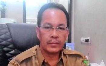 Plt Kepala Dinas Pendidikan Kabupaten Kapuas Drs Ilham Anwar.