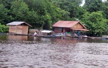 Petani keramba di Danau Seluluk mengeluhkan tingginya kadar keasaman air di Sungai Arut yang menurunkan nafsu makan ikan budidaya.