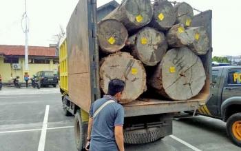 Truk bermuatan kayu gelondongan diamankan di Polres Palangka Raya, Rabu (5/4/2017).
