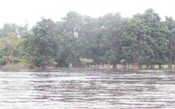 Di kawasan danau seluluk ini menjadi salah satu pengembangan kolam beje