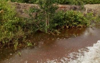 Lokasi Pembangunan Irigasi PU Bagian Perairan Kabupaten Kapuas Di Desa Naraha, Kecamatan Pulau Petak, Kabupaten Kapuas.