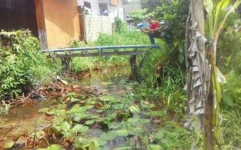 Sungai Ulis dan Sungai Usang di Jalan Pemuda Kelurahan Selat Utara Kecamatan Selat, terlihat dipenuhi tanaman, sampah dan buntu hingga menjadi semak belukar. Sungai tersebut pun kini menjadi dangkal.
